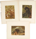 Antiques:Posters & Prints, Collection of Thirteen 19th Century Illustrations of VariousMammals. 9.5 x 12.5 inches.... (Total: 12 Items)