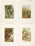 Antiques:Posters & Prints, Lot of Ten Vintage Illustrations of Various Birds. 9.5 x 12.5inches.... (Total: 10 Items)