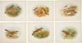 Antiques:Posters & Prints, [Grönvold] Six Chromolithograph Illustrations of Birds. 11.25 x8.75 inches. From Birds of Great Britain and Ireland, in...(Total: 6 Items)
