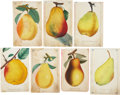 Antiques:Posters & Prints, Lot of Seven Chromolithograph Illustrations of Various PearVarieties. Each about 5.25 x 8.5 inches. From Dewey's Pocket Ser...(Total: 7 Items)