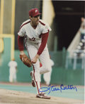 Autographs:Photos, Steve Carlton and Tony Gwynn Signed Photographs. ... (Total: 2items)