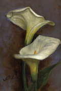 American:Still Life, The Hon. Paul H. Buchanan, Jr. Collection. LOUIS COMFORT TIFFANY(American, 1848-1933). Calla Lilies (double-sided sti...