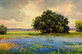 Paintings, ROBERT WILLIAM WOOD (American, 1889-1979). Texas Dreams. Oil on canvas. 20 x 30 inches (50.8 x 76.2 cm). Signed lower le...