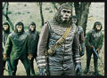 """Movie Posters:Science Fiction, Battle for the Planet of the Apes (20th Century Fox, 1973). Lobby Card Set Plus One (9) (11"""" X 14""""). Science Fiction.. ... (Total: 9 Items)"""