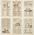 Antiques:Posters & Prints, Group of Six Copper Plate Engraved Illustrations Related to Horses Circa 1678.... (Total: 6 Items)