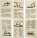 Antiques:Posters & Prints, Group of Six Copper Plate Engraved Illustrations Related to HorsesCirca 1678.... (Total: 6 Items)