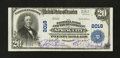 National Bank Notes:Pennsylvania, Spring City, PA - $20 1902 Plain Back Fr. 654 The NB & TC Ch. #2018. ...