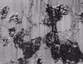 Photographs, AARON SISKIND (American, 1903-1991). Peeling Paint, 1949. Gelatin silver, printed later. Paper: 11 x 14 inches (27.9 x 3...