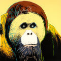 Fine Art - Work on Paper:Print, ANDY WARHOL (American, 1928-1987). Orangutan, 1983.Screenprint in colors on paper. 38 x 38 inches (96.5 x 96.5 cm).Ed....