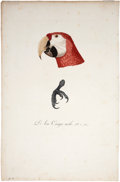 Antiques:Posters & Prints, Jacques Barraband. L'Ara Canga mâle, Pl. 2. A stipple engraving,printed in color and finished by hand, from Le Vaillant's ...