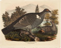 Antiques:Posters & Prints, Daniel Giraud Elliot. Richardson's Grouse. Hand-colored lithograph from Elliot's A Monograph of the Tetraoninae, or Family...