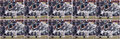 Football Collectibles:Photos, Donovan McNabb Oversized Signed Photographs Lot of 10....
