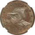 Patterns, 1855 P1C Flying Eagle Cent, Judd-173, Pollock-198, Low R.7, PR64Brown NGC....