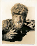 """Movie Posters:Horror, Lon Chaney Jr., Claude Rains, and Evelyn Ankers in """"The Wolf Man"""" (Universal, 1941). Stills (3) (8"""" X 10"""").. ... (Total: 3 Items)"""