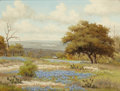 Texas:Early Texas Art - Regionalists, C. P. MONTAGUE (American, 20th Century). BluebonnetLandscape. Oil on canvas. 12 x 16 inches (30.5 x 40.6 cm).Signed lo...