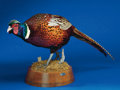 Zoology:Taxidermy, RINGNECK PHEASANT. ...