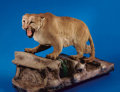 Zoology:Taxidermy, RECORD-CLASS MOUNTAIN LION (COUGAR) FULL-BODY MOUNT. ...