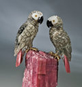 Lapidary Art:Carvings, AFRICAN GREY PARROTS ON RUBELLITE TOURMALINE. ...