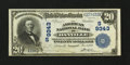 National Bank Notes:Virginia, Danville, VA - $20 1902 Plain Back Fr. 652 The American NB Ch. #(S)9343. ...