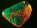 Amber, SUPERB INSECTS IN RARE CRYSTAL-CLEAR GREEN AMBER. ...