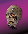 Archeological Artifacts, AUTHENTIC EGYPTIAN MUMMY HEAD. ...