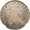 Early Dollars, 1799 $1 7x6 Stars MS60 NGC....