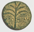 Ancients:Judaea, Ancients: Judaea. Bar Kochba Revolt. 132-135 C.E. AE 23 mm (8.24 g,6 h). Undated, year 3 (134/5 C.E.)....