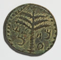 Ancients:Judaea, Ancients: Judaea. Bar Kochba Revolt. 132-135 C.E. AE 24 mm (11.86g, 5 h). Year 2 (133/4 C.E.)....