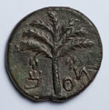 Ancients:Judaea, Ancients: Judaea. Bar Kochba Revolt. 132-135 C.E. AE 24 mm (8.62 g,6 h). Year 2 (133/4 C.E.)....