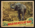 "Movie Posters:Documentary, Wild Beasts at Bay Lot (Cosmopolitan, 1947). Lobby Cards (9) (11"" X 14""). Documentary.. ... (Total: 9 Items)"