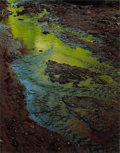Photographs:Contemporary, ELIOT FURNESS PORTER (American, 1901-1990). Green Reflections inStream, Moki Canyon Creek, Utah, from the Glen Canyon Por...