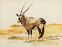 BOB KUHN (American, 1920-2007) Oryx Gouache, watercolor, and charcoal on paper 21 x 25 inches (53