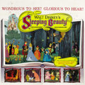 "Movie Posters:Animated, Sleeping Beauty (Buena Vista, 1959). Six Sheet (81"" X 81""). ..."