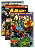 Bronze Age (1970-1979):Horror, Werewolf by Night Group (Marvel, 1973-77) Condition: AverageVF/NM.... (Total: 29 Comic Books)