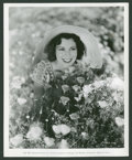"""Movie Posters:Miscellaneous, Frances Dee Lot (Paramount, 1936-1937). Photos (3) (8"""" X 10"""").Miscellaneous.. ... (Total: 3 Items)"""