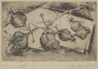 LIA CUILTY (American, 20th Century) Pomegranates, 1956 Etching on paper 12 x 14-3/4 inches (30.5