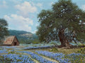 Texas:Early Texas Art - Regionalists, WILLIAM A. SLAUGHTER (American, 1923-2003). Barn withBluebonnets, 1977. Oil on canvas. 12 x 16 inches (30.5 x 40.6cm)...