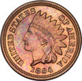 Proof Indian Cents, 1864 Indian Cent Bronze No L--Obverse Improperly Cleaned--NGC. Proof....
