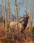 Western:20th Century, TOM BEECHAM (American, 1926-2000). Elk in the Woods. Acrylic on board. 17-1/2 x 14 inches (44.5 x 35.6 cm). Signed lower...