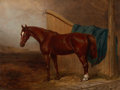 Fine Art - Painting, European:Antique  (Pre 1900), PROPERTY OF A LADY. H. MOORE (British, 19th Century). Portraitof a Horse, 1859. Oil on canvas. 18 x 23 inches (45...