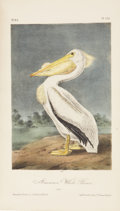 Books:Non-fiction, John James Audubon. The Birds of America, from DrawingsMade in the United States and Their Territories. Volume ...