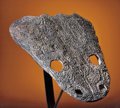 Fossils:Amphibians & Reptiles, GIANT TRIASSIC REPTILE SKULL SECTION. ...