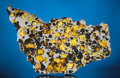 Meteorites:Stoney Irons, IMILAC - COMPLETE SLICE OF A METEORITE WITH SPACE GEMS. ...