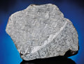 Meteorites:Irons, LARGE AND UNUSUAL MUONIONALUSTA END SECTION. ...