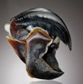 Zoology:Osteology, GIANT HUMBOLDT SQUID BEAK. ...