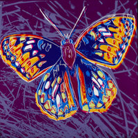 ANDY WARHOL (American, 1928-1987) San Francisco Silverspot, 1983 Screenprint in colors 38 x 38 in
