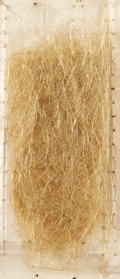 Miscellaneous:Ephemera, [Varina Davis] Large Lock of Hair. This lock, from the wife ofJefferson Davis, is yellowed and grayed with age. It is accom...