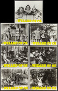 """Movie Posters:Fantasy, The Wizard of Oz (MGM, R-1949). Double Weight Photos (11"""" X 14""""). Fantasy.. ... (Total: 7 Items)"""