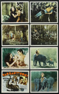 "Movie Posters:Adventure, Tarzan Finds a Son (MGM, R-1940s). International Lobby Card Set of8 (11"" X 14""). Adventure. ... (Total: 8 Items)"