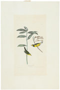 Antiques:Posters & Prints, John James Audubon (1785-1851). Hooded Warbler - Plate CX (HavellEdition).. A lovely hand-colored aquatint engraving by R...
